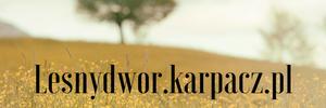 http://www.lesnydwor.karpacz.pl/o-nas
